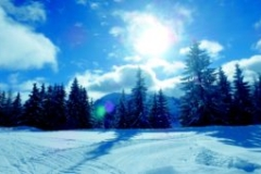 bluetintsnow1920x1088-300x170
