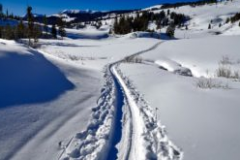 powdertrailwithName-300x200